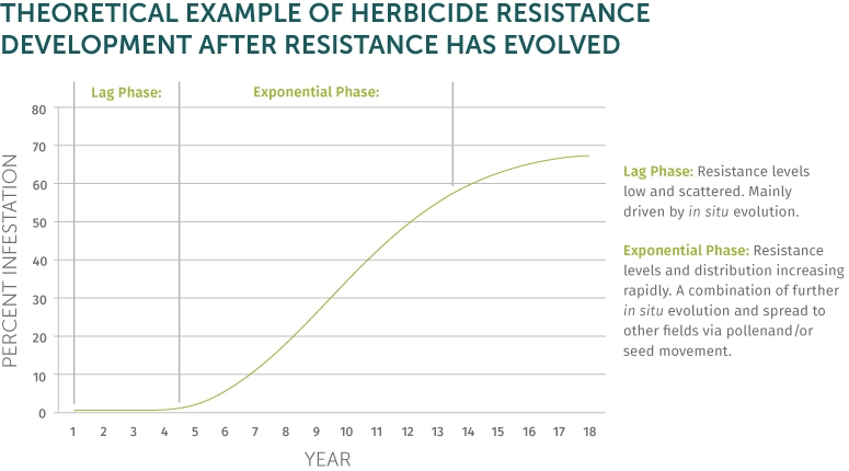Example-of-Herbicide-Resistance.jpg#asse